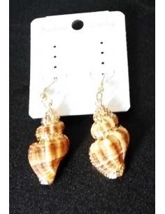 Boucles d'oreilles coquillage allongé